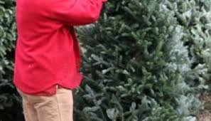 decatur metro buying your christmas tree from a local organization