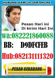 waspada hammer of thor bohong penipu forex herbal