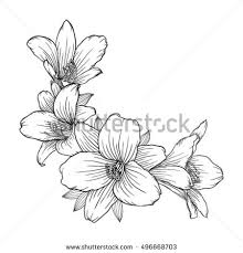 Flower Designs For Drawing Flower Engraving Stock Images Royalty Free Images U0026 Vectors