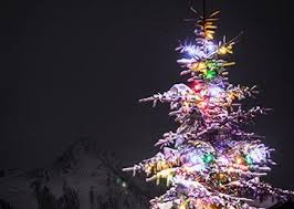 light up on the mountain crested butte mountain resort