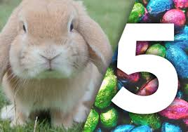 easter bunny five marketing lessons from the easter bunny smm advertising website