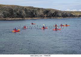 australian shepherd kayaking sea shepherd stock photos u0026 sea shepherd stock images alamy