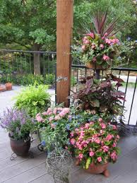 Summer Container Garden Ideas Signature Gardens Containers Annuals Summer