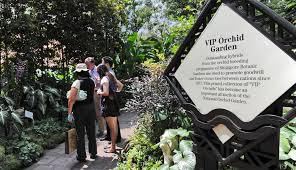 singapore botanic gardens unesco world heritage site cnn travel