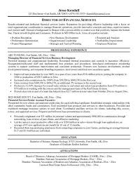Support Project Manager Resume Name by Finance Manager Resume Template Finance Manager Resume Excel