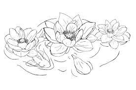 black outline lotus flowers tattoo design