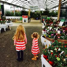 family tree garden center tea with santa at elm court a wyevale garden centre review