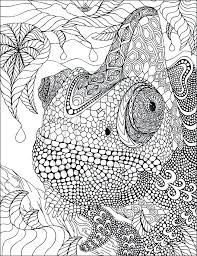 printable coloring pages zentangle free printable zentangle coloring pages adults leversetdujour info