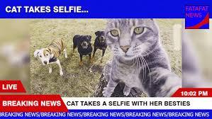 Breaking News Meme Generator - download fake breaking news maker super grove