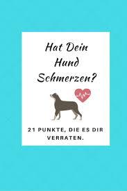 Tierarzt Salzgitter Bad Die Besten 25 Windhunde Ideen Auf Pinterest Italienischer