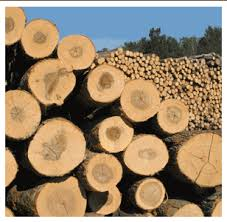 wood products wooden heat treated pallets manufacturer wisconsin used