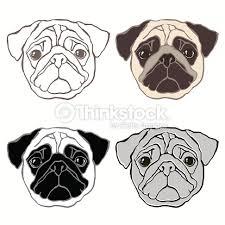 vector set of pugs face sketch four variants vector art thinkstock
