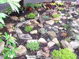 Rock Garden Cground Rock Gardens Forum My Rock Garden Garden Org
