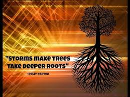 inspirational tree quotes for you