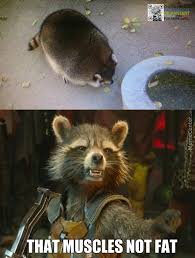 Funny Raccoon Meme - mario raccoon memes best collection of funny mario raccoon pictures