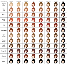raw hair dye color chart henna hair dye guide makedes com