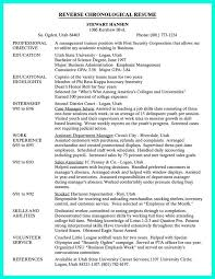 examples of chronological resumes chronological resume example