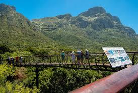 Kirstenbosch National Botanical Garden Kirstenbosch Wins International Garden Of The Year