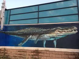 aquarium unveils shark wall mural wvxu view slideshow 5 of 14