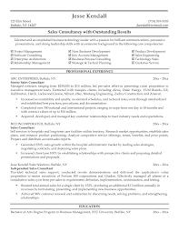 basic sle resume format 2 consultant resume sle resume sles