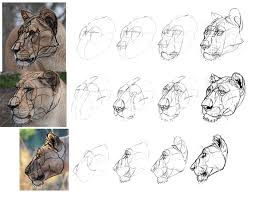 how to draw from imagination beyond references