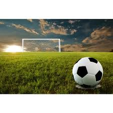 soccer penalty kick wall mural majestic wall art share this product