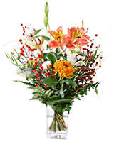 flower of the month club flower of the month club monthly flower clubs with free shipping