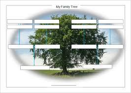 31 genogram templates u2013 free word pdf psd documents download