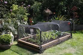 raised bed garden bird netting gardening u0026 outdoors pinterest