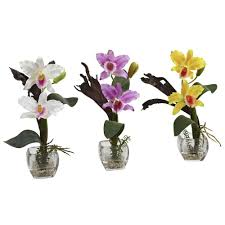 orchid arrangements nearly mini cattleya orchid arrangement set of 3 1321 s3