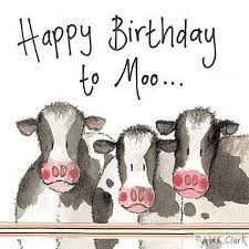 cow greeting cards 62 best cards images on birthday wishes cards and
