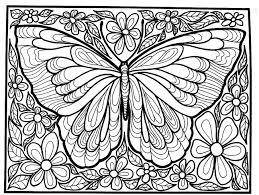 difficult big butterfly insects coloring pages adults