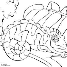 leo lionni coloring pages aecost net aecost net