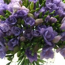 flowers in november flowers in season november bridalguide