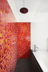 Feature Wall Bathroom Ideas 38 Best Showers Feature Walls Images On Pinterest Bathroom Ideas