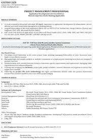 Resume Template Software by Resume In Text Format Software Developer Resume Template Software