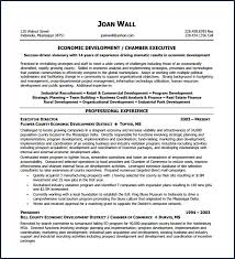executive resume exle non profit resume sle from executive resume template 12 free