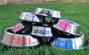 personalized bowl personalized stainless steel dog bowls customize your pet s name