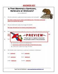 all worksheets carnivores herbivores and omnivores worksheets