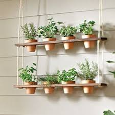 kitchen herb garden ideas homey inspiration kitchen window herb garden beautiful ideas diy