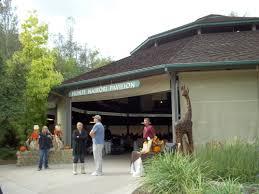san diego safari park zoo the thankful