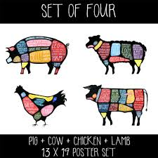 set of four cow pig chicken and lamb butchery diagram prints