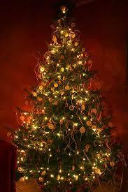 decorations lights lights dyker heights 2013