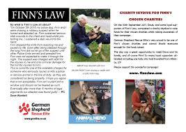belgian sheepdog rescue trust facebook german shepherd rescue elite rescue a german shepherd