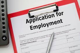Resume Critique Resume Application Review Airlineoasis Com