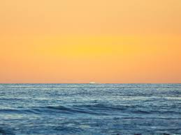 all about the green flash coastal living