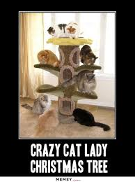 Crazy Cat Memes - crazy cat lady christmas tree memey com
