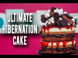 cake how to how to make my ultimate hibernation cake piled high with