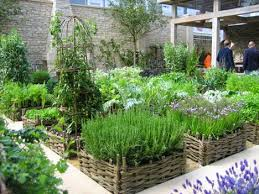 stylish and peaceful outdoor herb garden design jekkas farm