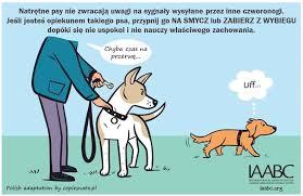 si e psa psy natrętne psy nieśłe co pies na to